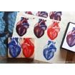 Coeur humain