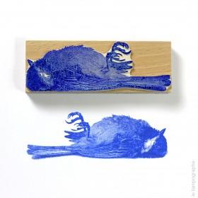 Oiseau mort - dead bird
